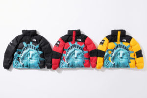 supreme-the-north-face-statue-of-liberty-baltoro-jacket-with-packable-hood
