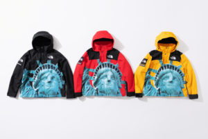 supreme-the-north-face-statue-of-liberty-jacket-with-packable-hood