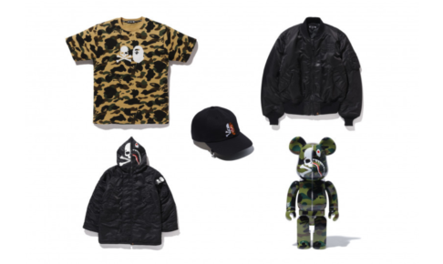 mastermind-vs-a-bathing-ape-berbrick