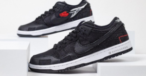 wasted-youth-x-nike-sb-dunk-low