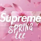 supreme-2021ss-week8-spring-tee